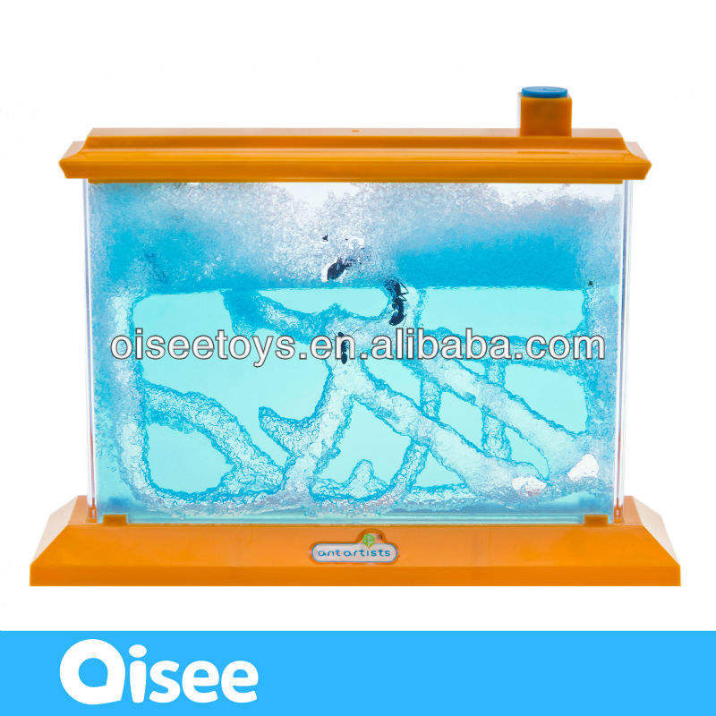 Wholesale Teaching Material Ant Camp Ant Farm Ant World