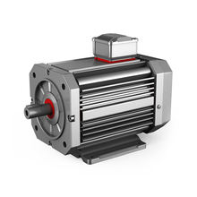 48v 1hp 1kw 2kw 3kw 3000w 4kw 4000w 5kw 7kw Electric BLDC Brushless DC Motor
