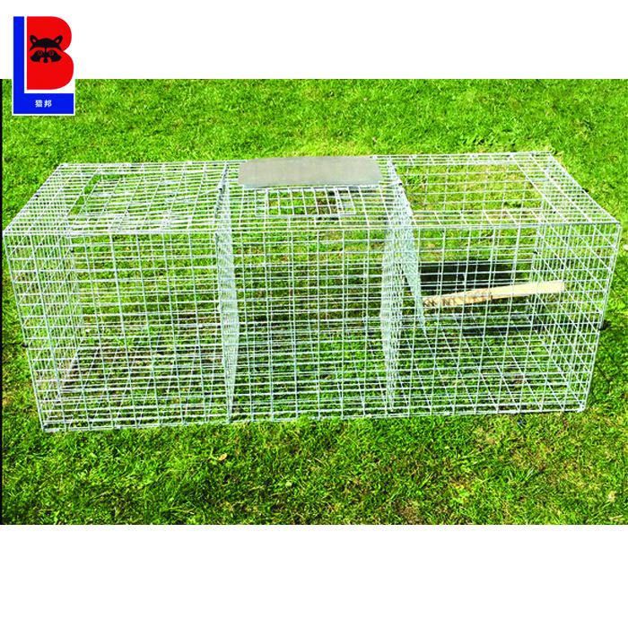 Factory Supply 인도적인 Live 동물 Bird Cage Trap Made in China