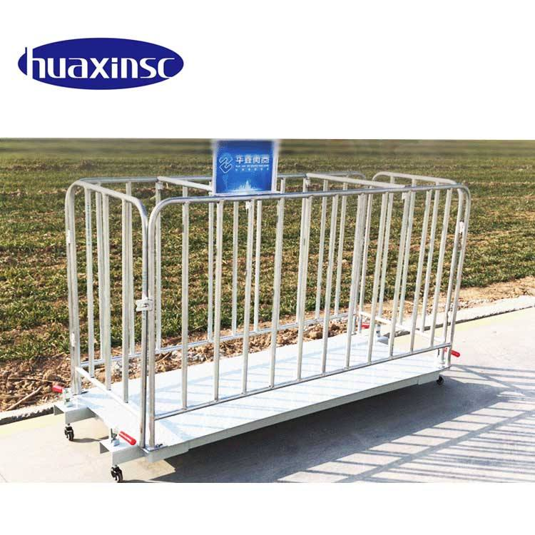 China Suppliers 5 Ton Used Electronic Digital Livestock Animal Pet Platform Scales Cattle Weighing Scales For Pig