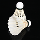 China Shuttlecock Badminton Super Grade Tournament Grade With Excellent Quality