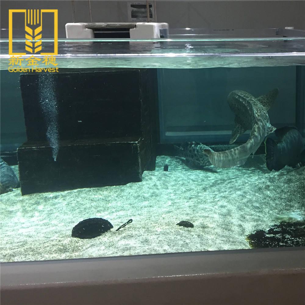 Melhor preço original feita sob encomenda grandes tanques de peixes de aquário de acrílico