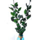 20-70cm Preserved rose stem long stem branches with leaves from Yunnan