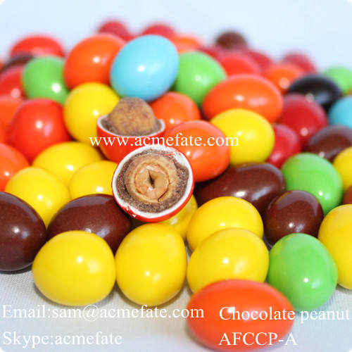 Best wholesale chocolate suppliers chocolate covered peanut