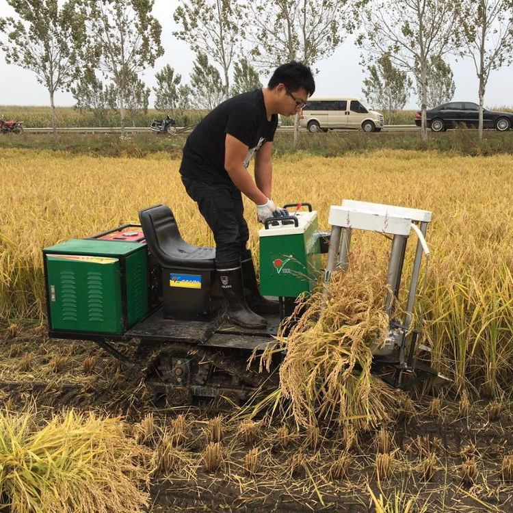 Track Rice Wheat Paddy Mini Harvester in Pakistan