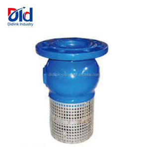 Ductile Iron Screen Suction Well Replacement Cost Working Principle Installation 6 Inch Foot Valve