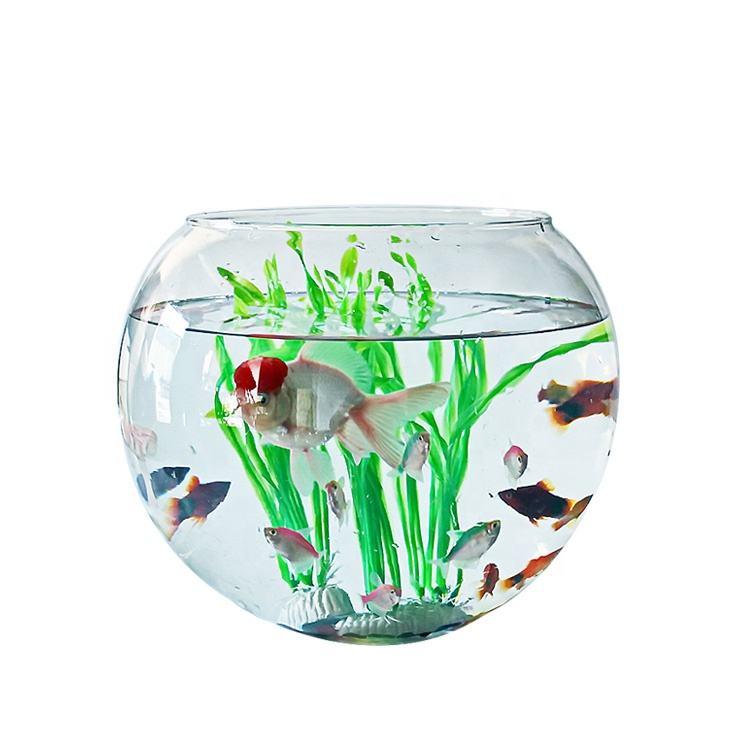 China Bowl Aquarium China Bowl Aquarium Manufacturers And Suppliers On Alibaba Com