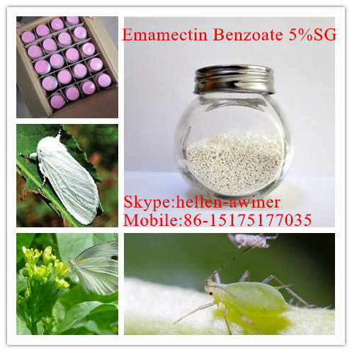 Emamectin бензоат 5% ру используется на хлопок для управления красный, белый и желтый паук, хлопок коробочный червь, яйца