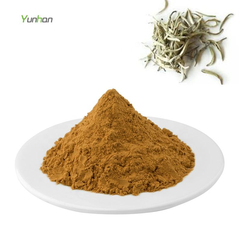Instant White Tea Extract Powder White Tea Powder