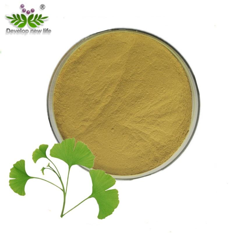 High Purity Treat Cognitive Alzhermier's Diseases Ginkgo Biloba Leaf Extract