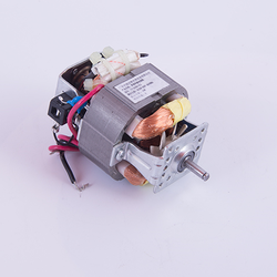5420 ac 220v 120v universal motor for blender
