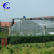 uv stabilized polycarbonate dome venlo greenhouse polyhouse