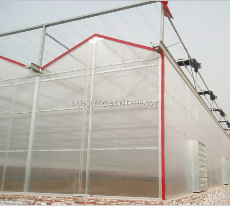 Polycarbonate plastic building Material 6mm Polycarbonate Sheet for greenhouse