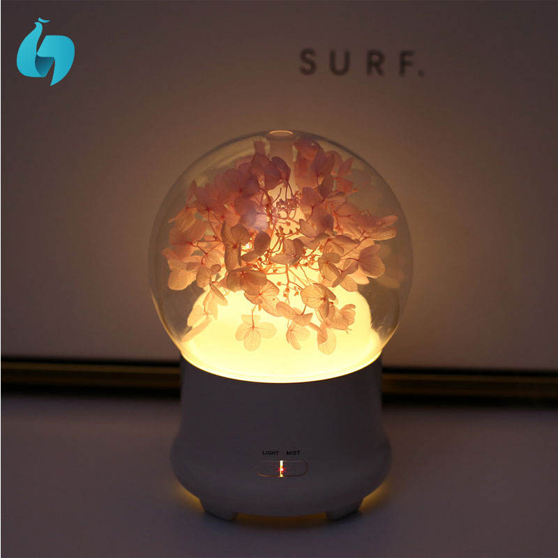 indonesia promotion preserved fresh flower aroma diffuser homemade humidifier