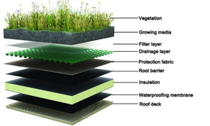HDPE Drainage cell drainage board for roof garden