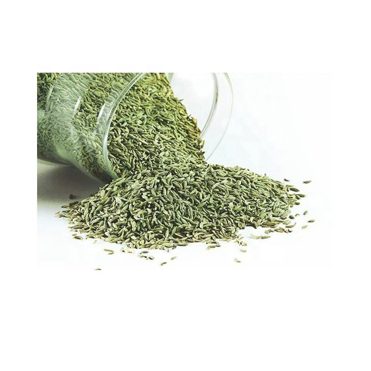 Egypt Bulk High Quality Natural Green Fennel Seeds