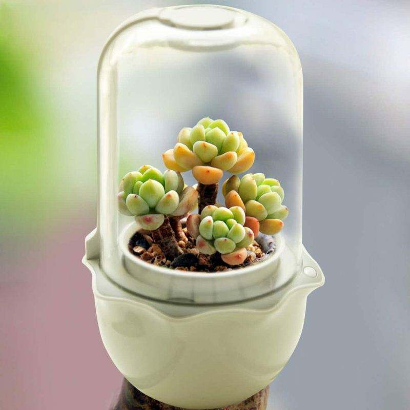 Hot ! mini electronic smart hydroponics kids flower garden flowerpot lamp diy water flower garden
