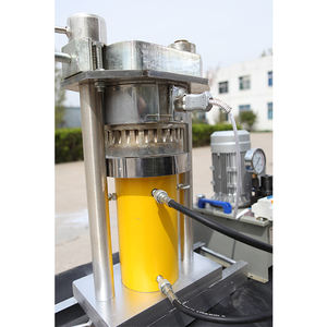 6YZ Hydraulic Small Scale Walnut Sesame Cocoa Liquor Edible Oil Press Machine For Production