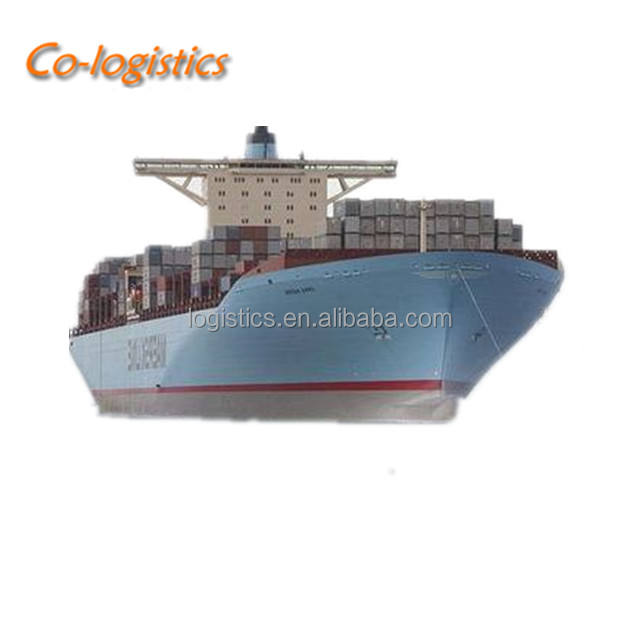 DDP sea freight service to DALLAS in USA from CHINA logistics