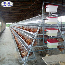 African automatic 3tiers 120 birds layers chicken cage philippines for poultry farm
