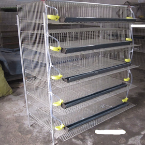 Layer Quail Cages For South Africa,Plastic Quail Cage Farming Equipment