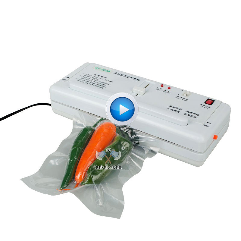 DZ-300A Table top portable handheld mini household commercial food vacume sealer packing machine