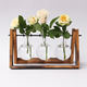 Classic High quality 3- glass plant terrarium with wooden stand Room decoration