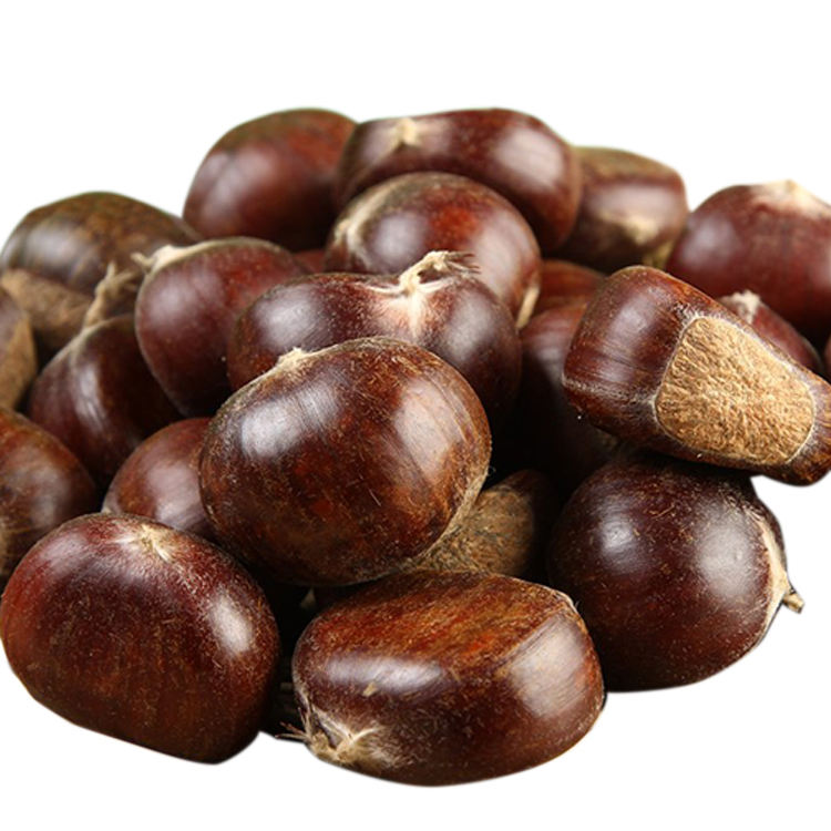 best Chinese New Crop fresh organic chestnut