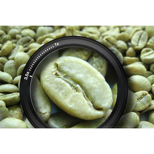 Brazilian green arabica coffee bean price of raw coffee