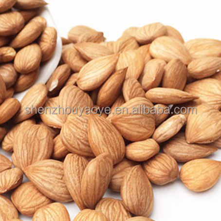 Good taste without shell Bulk Organic Sweet Apricot Kernels/Variety kinds of taste