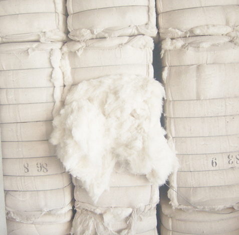 High quality organic cotton fiber,bleached organic cotton fiber,made by chinese top manufacturer