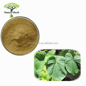 Hot Sale Powder Kava P.E. 10:1
