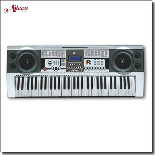 61 Keys Electric Keyboard/Music Keyboard Instrument (EK61204)