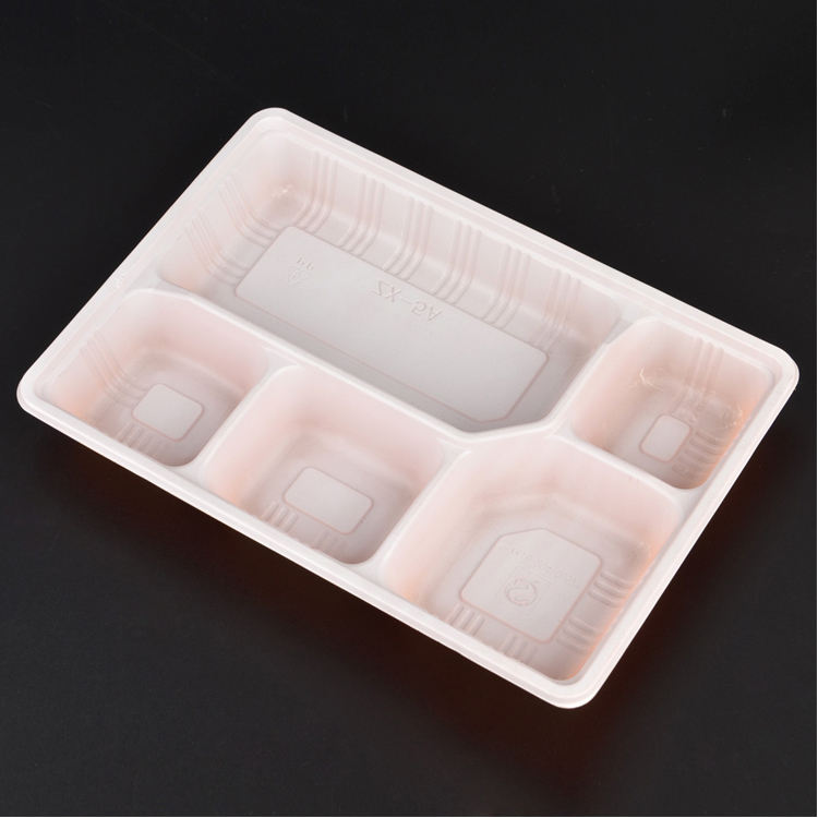 BPA free PP 5 compartment plastic bento lunch box