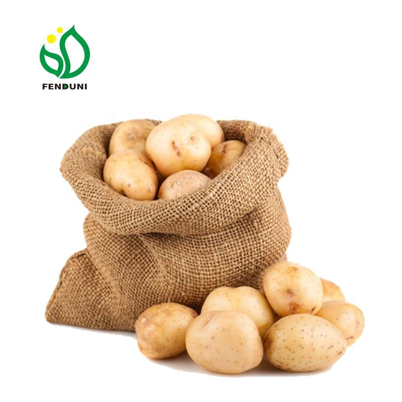 2021 China Sweet Potato for India / Indonesia / Bangladesh Market ( Size 80-150g , 20kg/Mesh Bag )