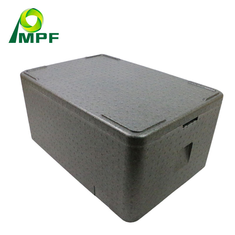 OEM EPP foam styrofoam box for Cold Chain packaging and delivery