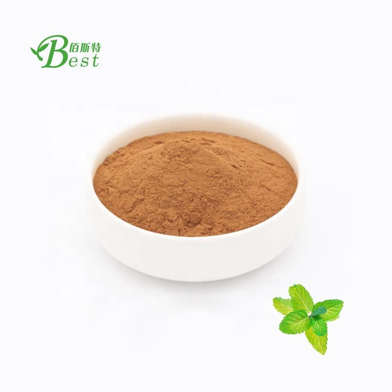 Wholesale Price Catmint / Catnip Extract / Nepeta Cataria Extract 10:1