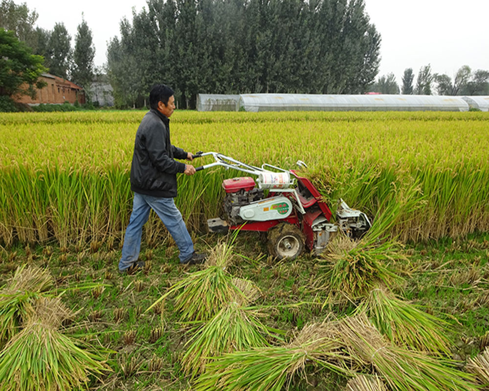 MINI HARVESTER /RICECUTTING MACHINE WITH CE CERTIFICATE
