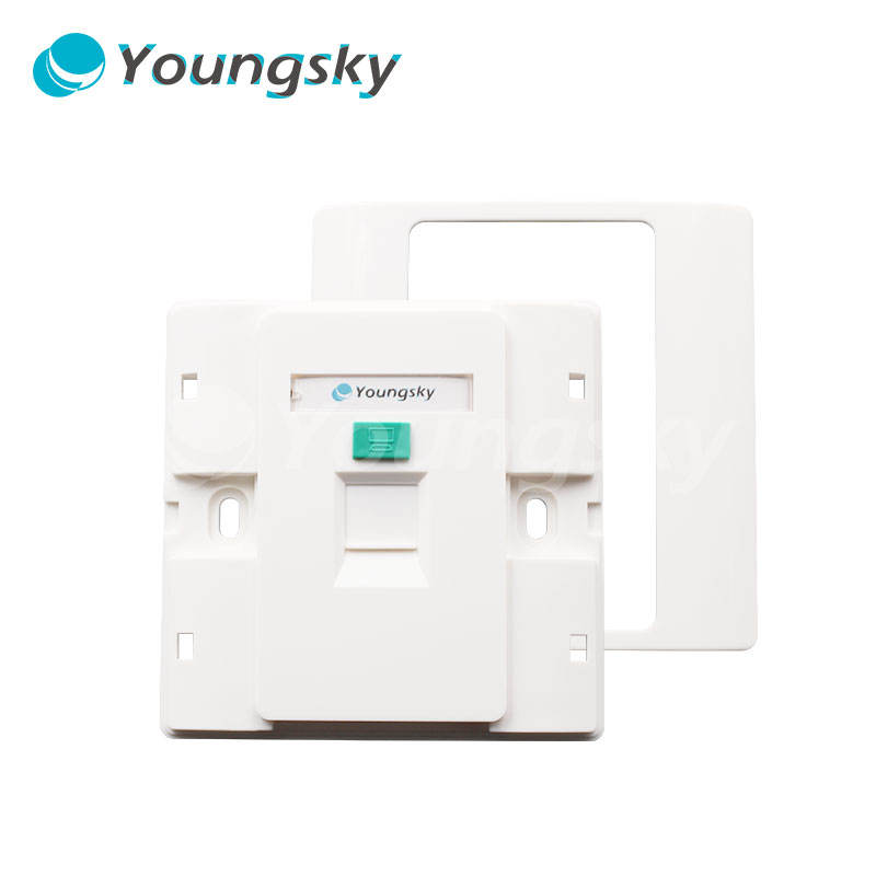 Standard Interior Decorating Wall Plate Network RJ45 RJ11 Face Plate