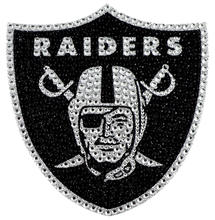 Glitter raiders hot fix heat transfer rhinestone motif for garment