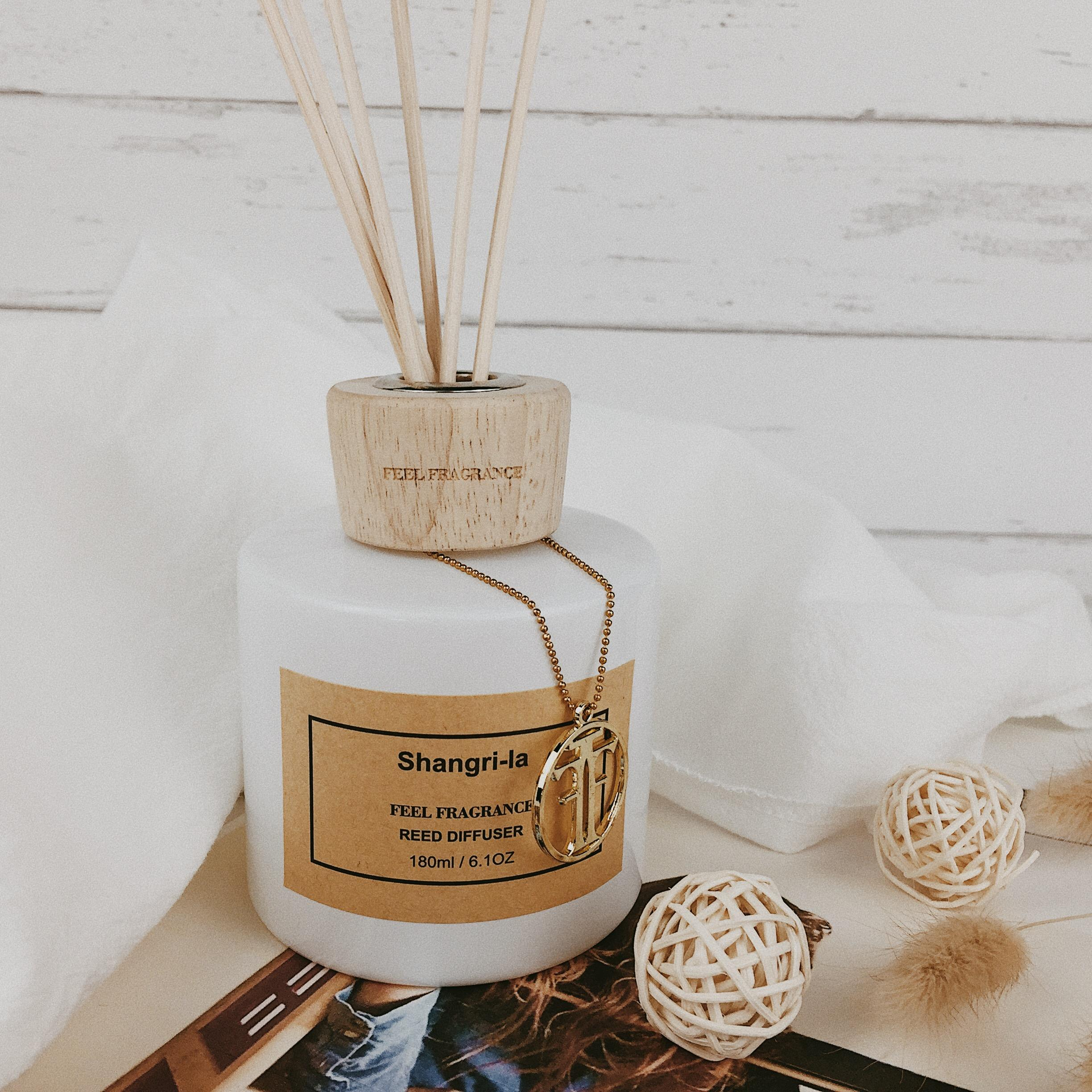 Hot selling and long-lasting reed diffuser for home