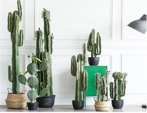 Cactus Mexicain-117cm