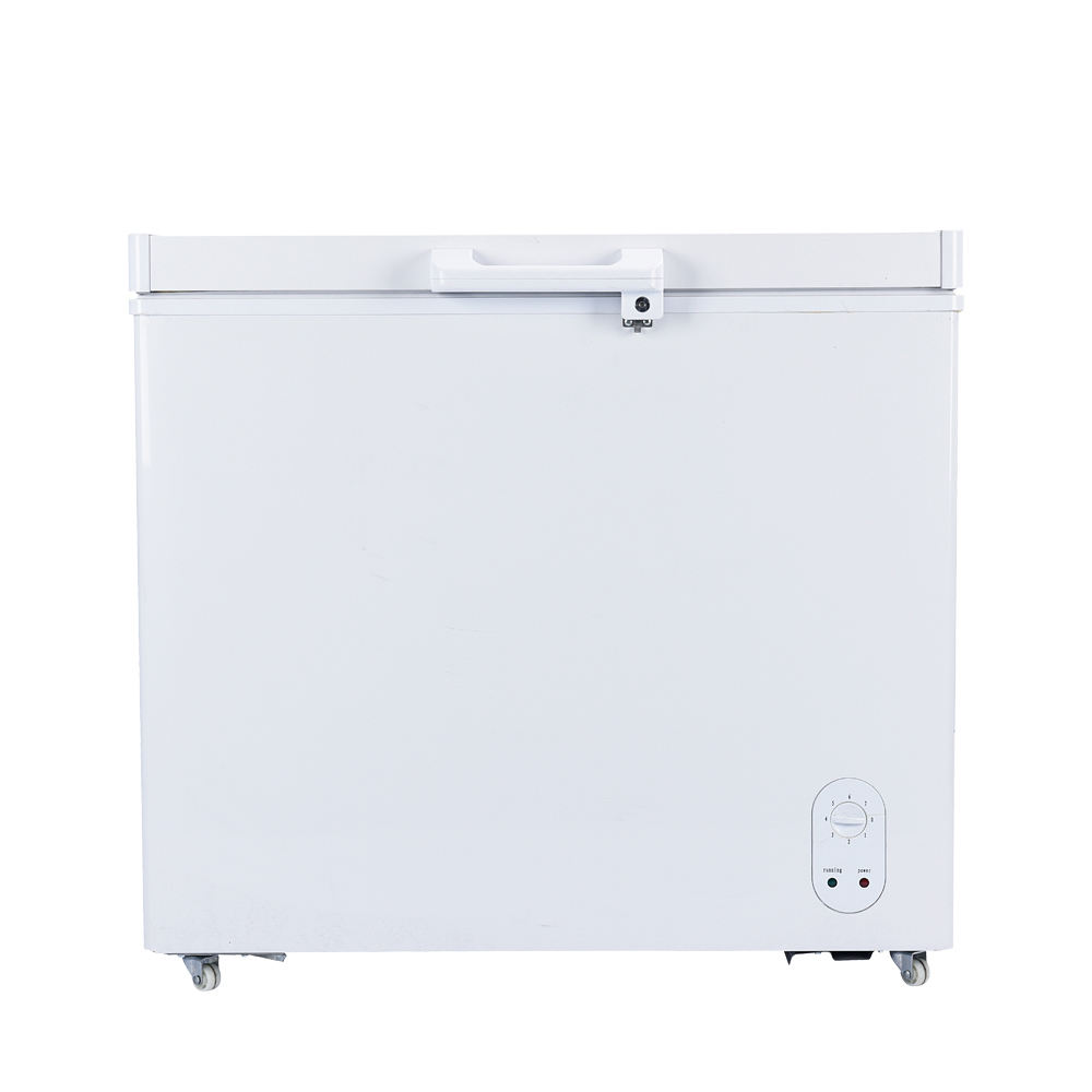 Folding Door Door Type and 65 Power (W) Solar Freezer 200L
