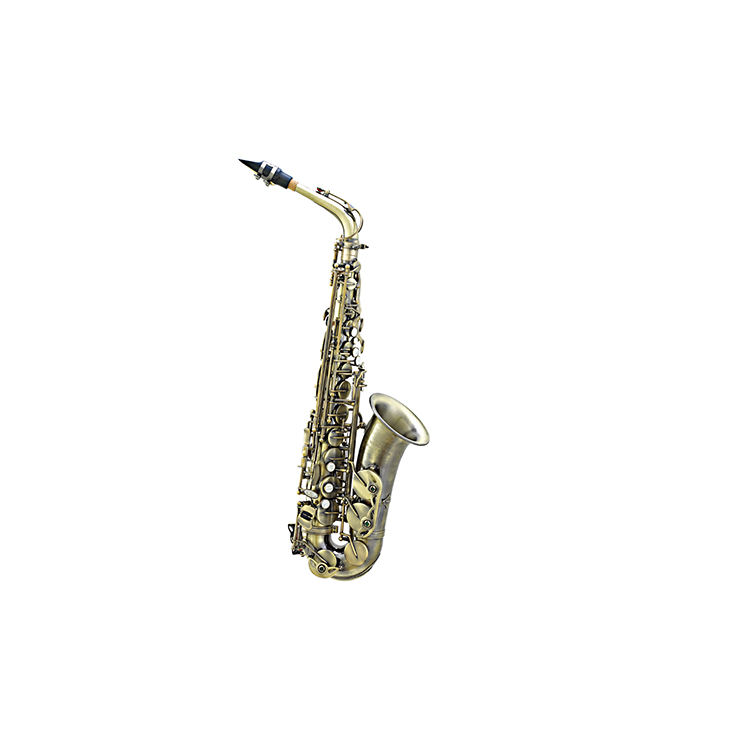 Superior Quality Best Slade Case And Eb Alto Saxophone
