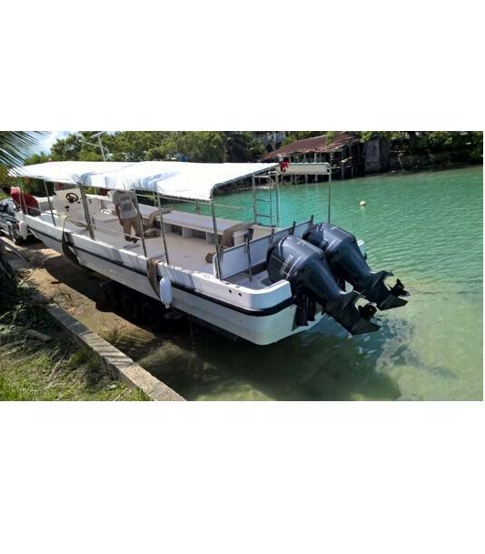 China Grandsea Fibreglass 9.6m Panga Type Dive and Scuba Boat for sale outboard engine
