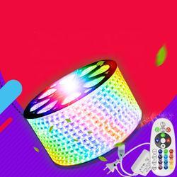 Free shipping 60 Led/m 110V/220V SMD 5050 Chips Flexible led strip multicolor RGB led strip light IP68 waterproof