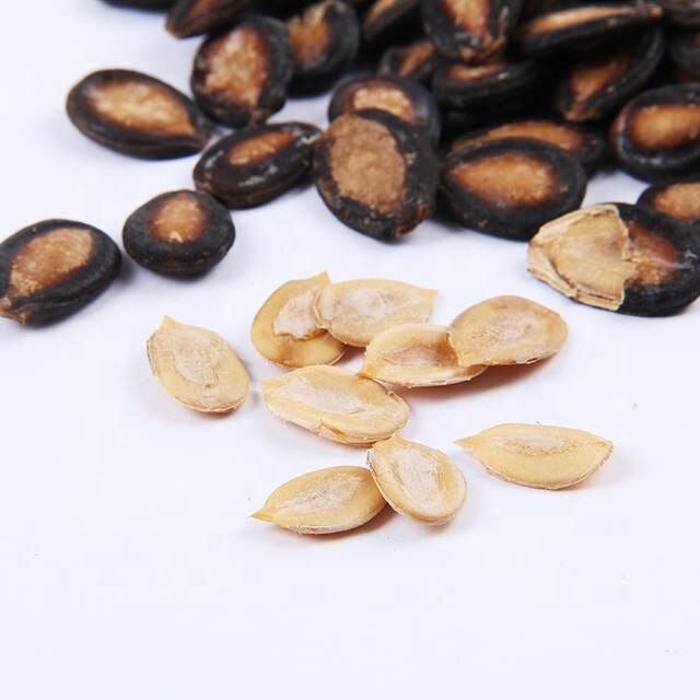 High Purity Natural Wholesale Melon Seeds/ Egusi Seeds for Sale in Germany