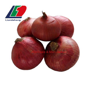 2020 Crop Fresh Onion Price, Cheap Price High Quality Egyption/Tunisian Red Onion