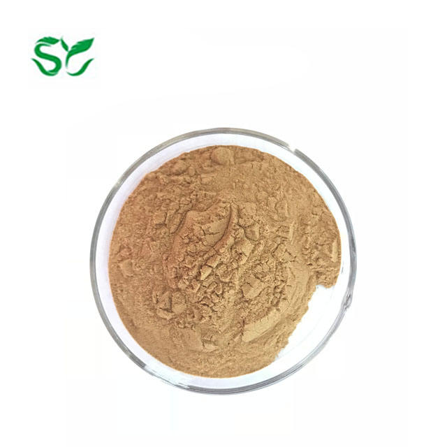 100% Pure Natural Passion Fruit Extract Powder in Bulk
