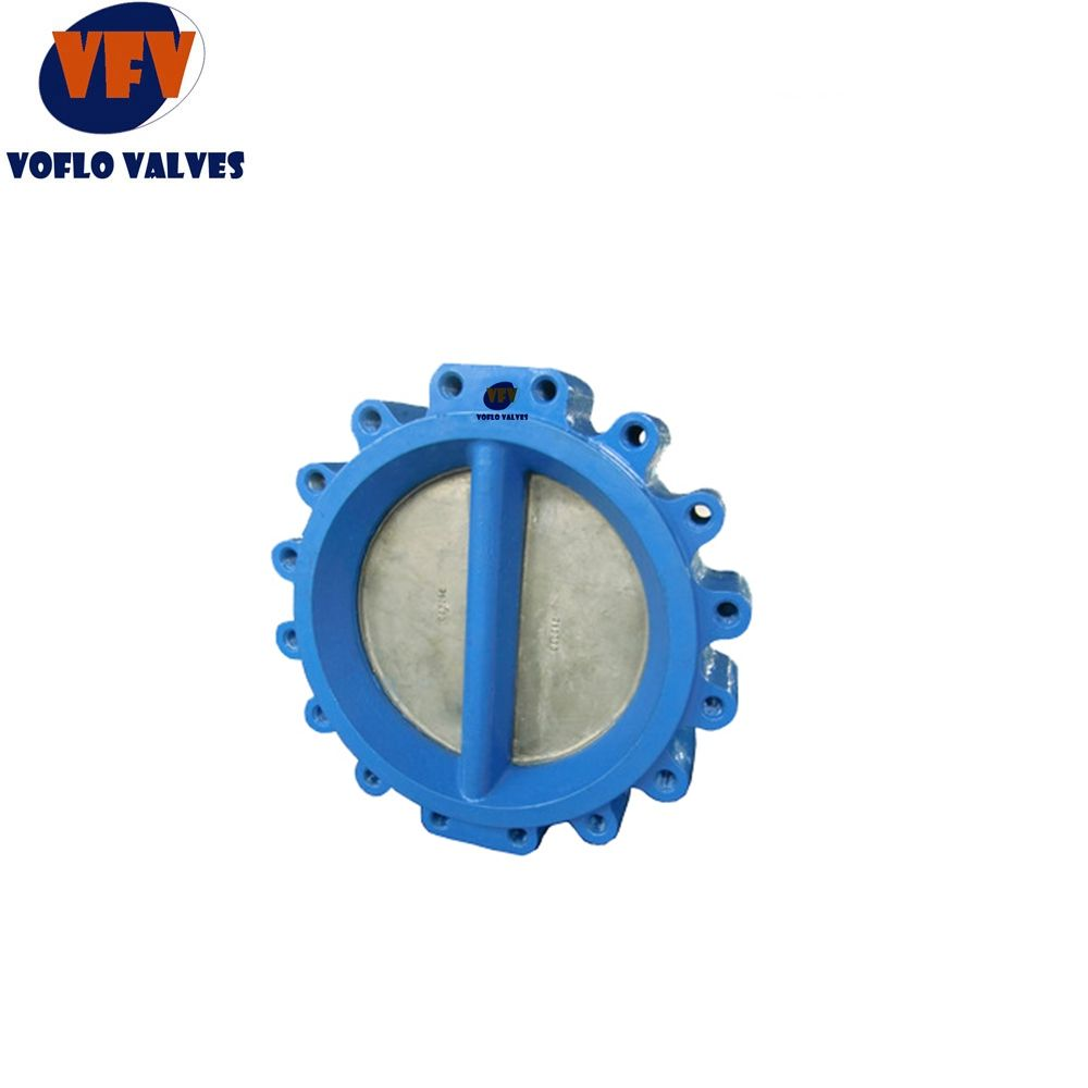 DN100 Ductile Iron body Stainless Steel Rob PN10 Dual Plate LT Check Valve